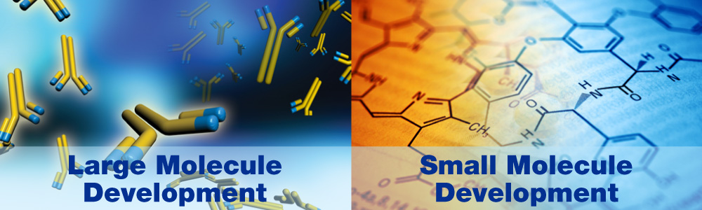 Large Molecule Development and Small Molecule Development